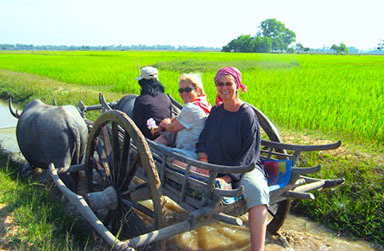 Countryside Ox Cart Ride
